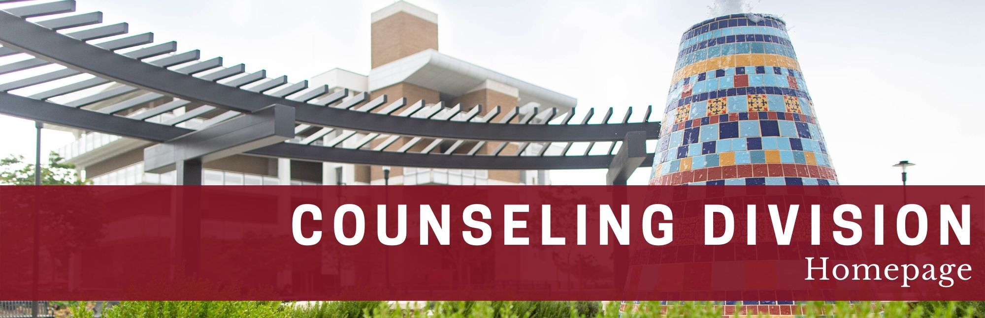 Counseling division